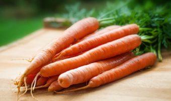 Хранение моркови на зиму в домашних условиях